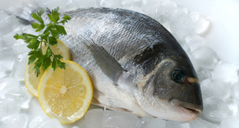 bienfaits-poisson