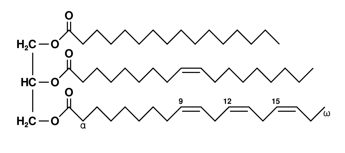 Fat_triglyceride_shorthand_formula