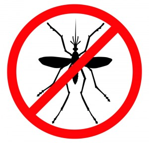 Mosquito vector silhouette. Insect reppelent emblem .