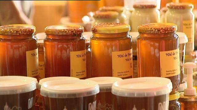 Les différents types de miel et leurs bienfaits