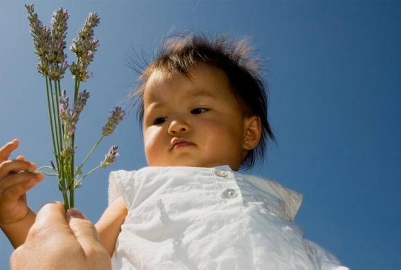 L'usage des huiles essentielles sur les nourrissons